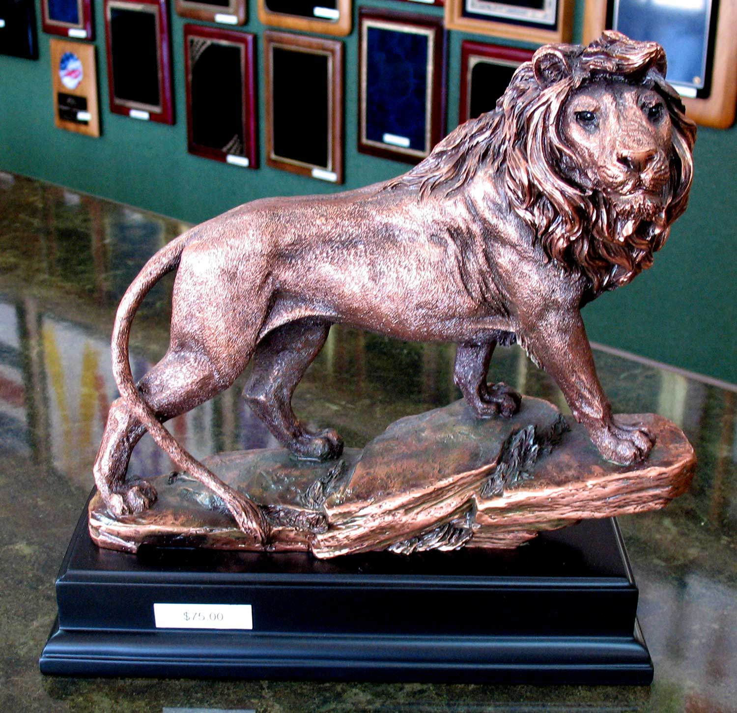 11 h x 11 w electroplated copper resin lion trophy on black base